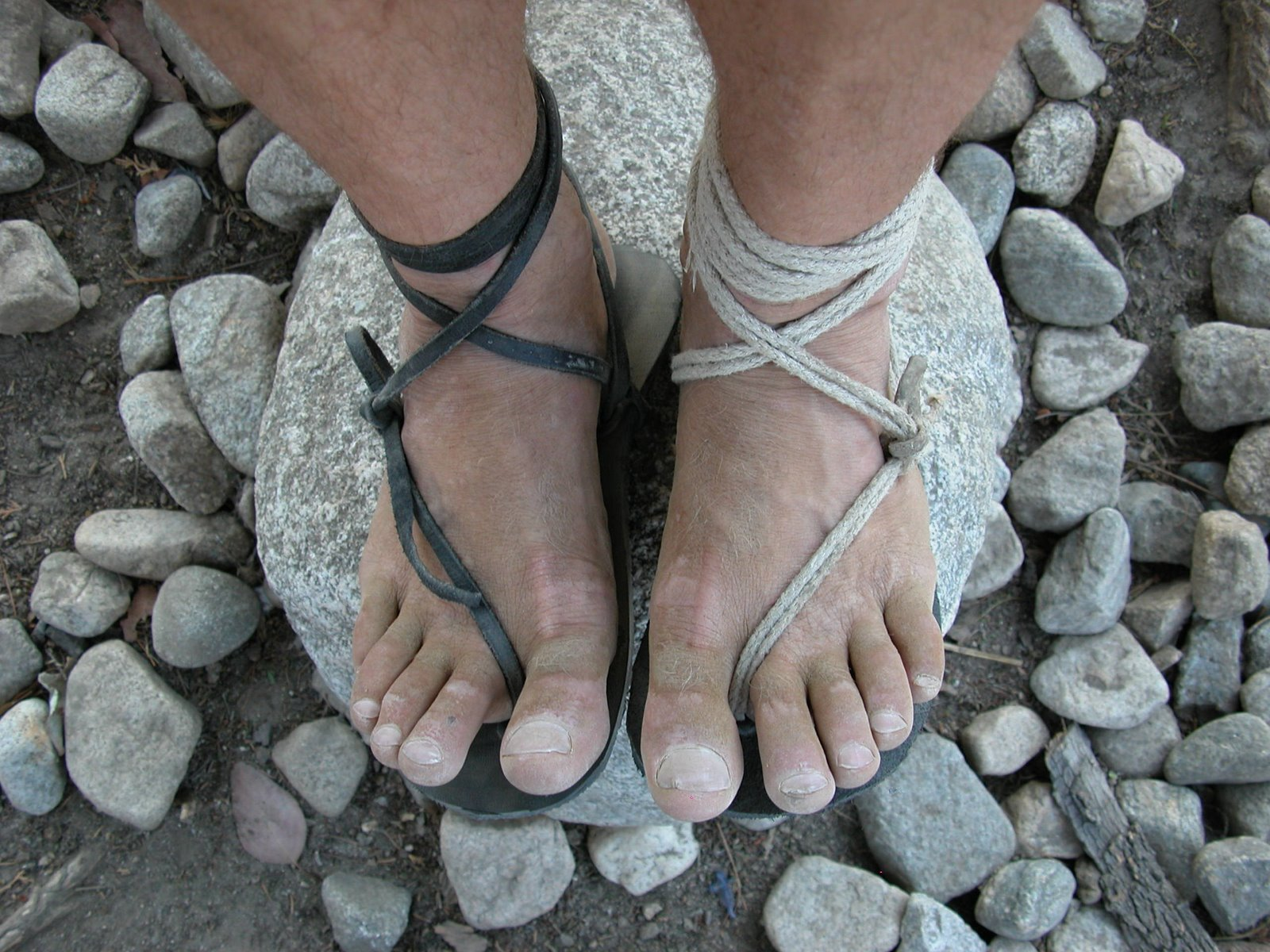 barefoot ted's feet